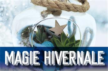 Magie Hivernale