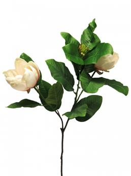MAGNOLIA GRANDIFLORA SPRAY 107CM ROSE